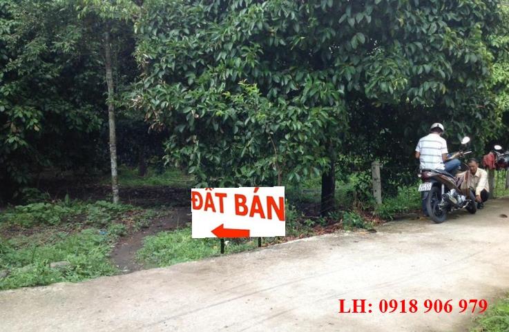 ban dat vuon Binh Duong1