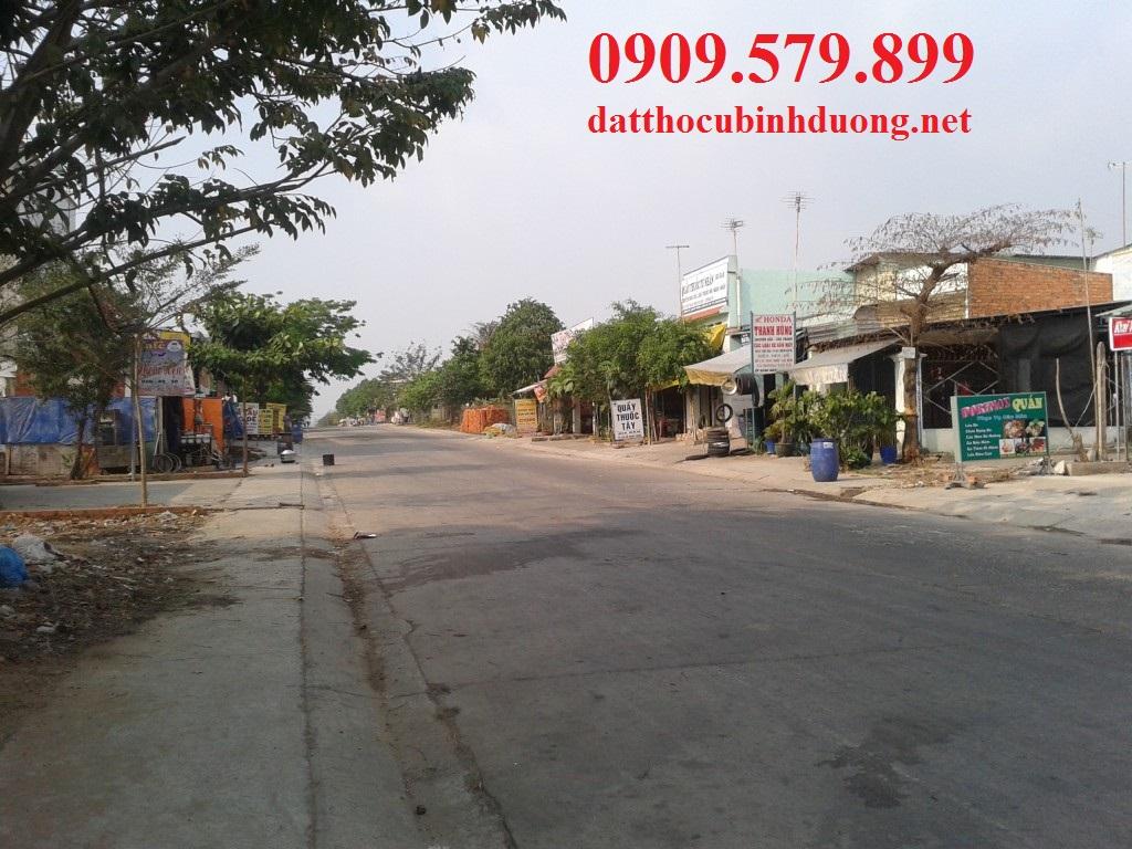 dat tho cu Binh Duong 2