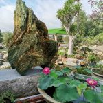 Đất vườn, nhà vườn nghĩ dưỡng view sông